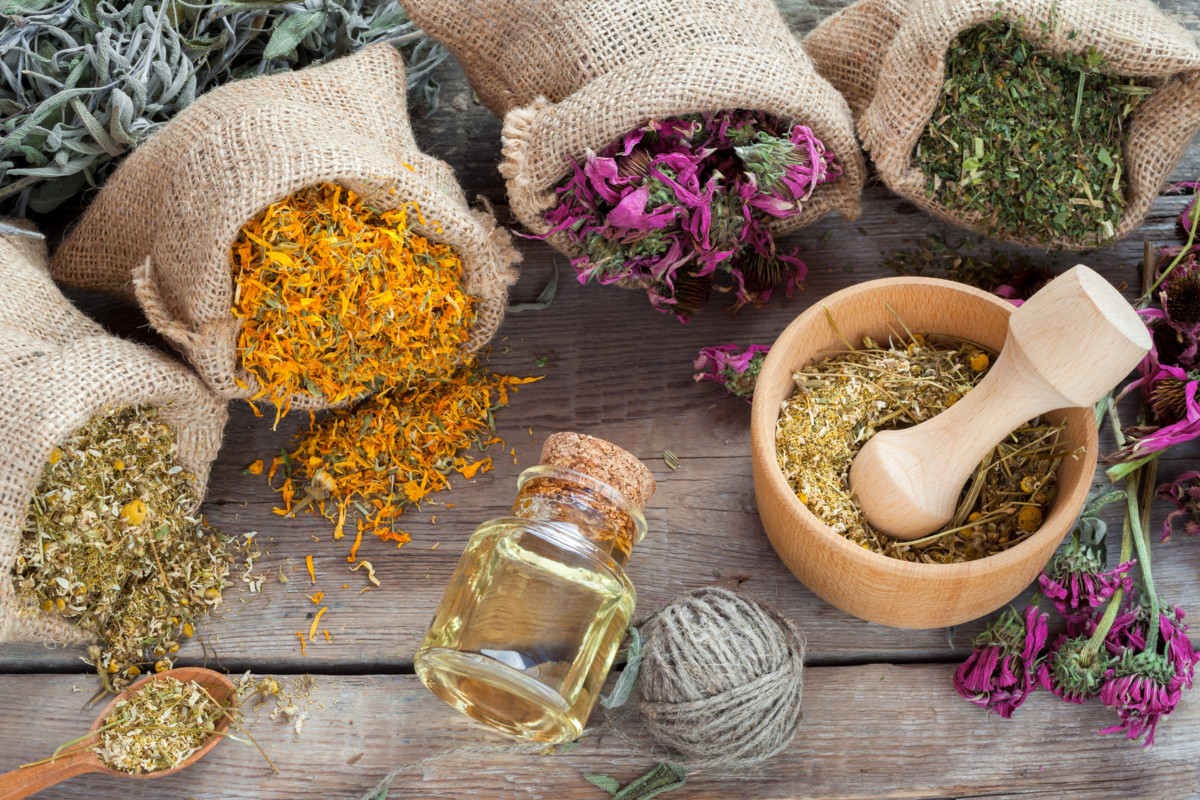 Herbs for the kidneys