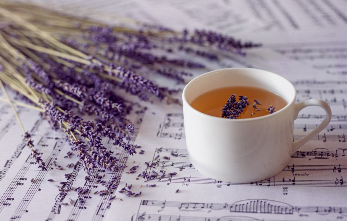 Lavender has been used by folk medicine as a remedy since time immemorial.