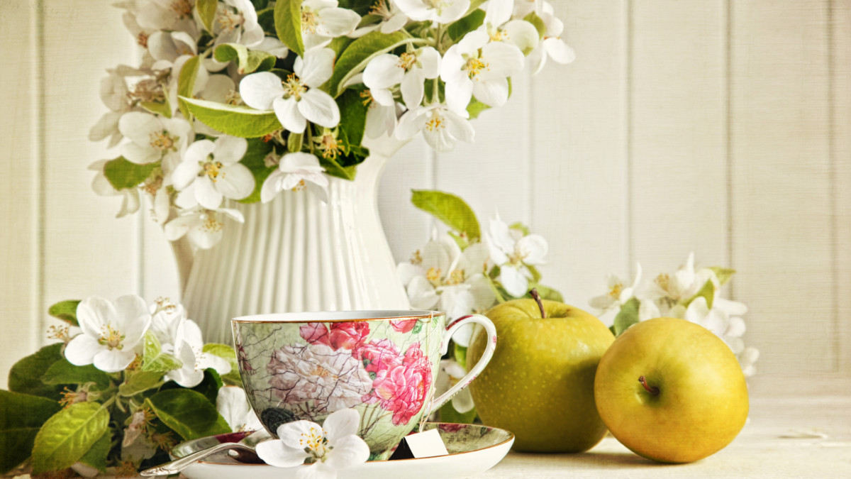 Jasmine is an aphrodisiac, its incredible healing power was first noticed by the Chinese